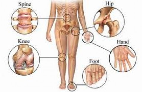 Best treatment for orthopedic problems Mumbai